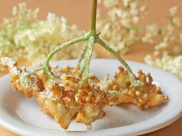 Elderflower fritters 1